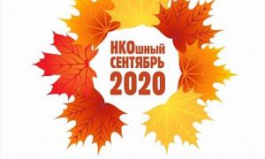 В День города некоммерческие организации региона презентуют ярославцам свои услуги