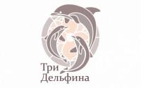 Образовательный проект «Три дельфина»