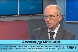 "Программа ""В тему"" от 28.11.2019: Александр Минькин"