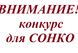 Начинается конкурсный отбор проектов СОНКО по оказанию социальных услуг