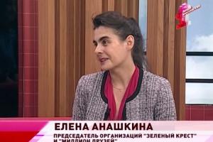 Елена Анашкина: Помогать экологии надо учить