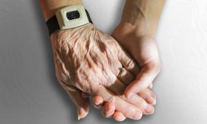 Программа «Вектор добровольчества – старшее поколение»